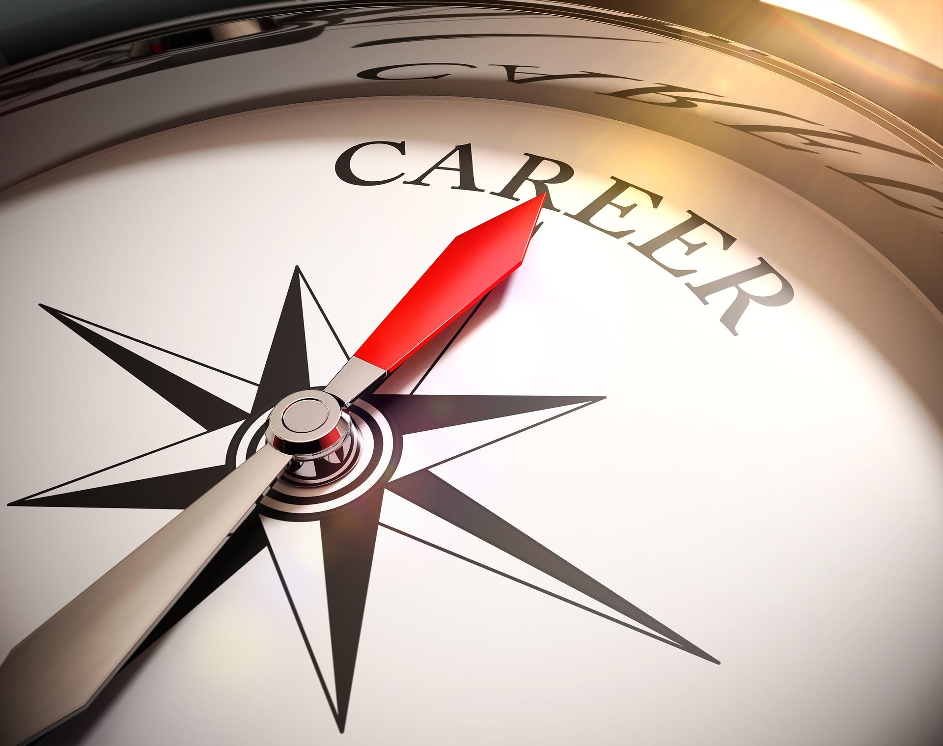 career graph - CollegeMarker